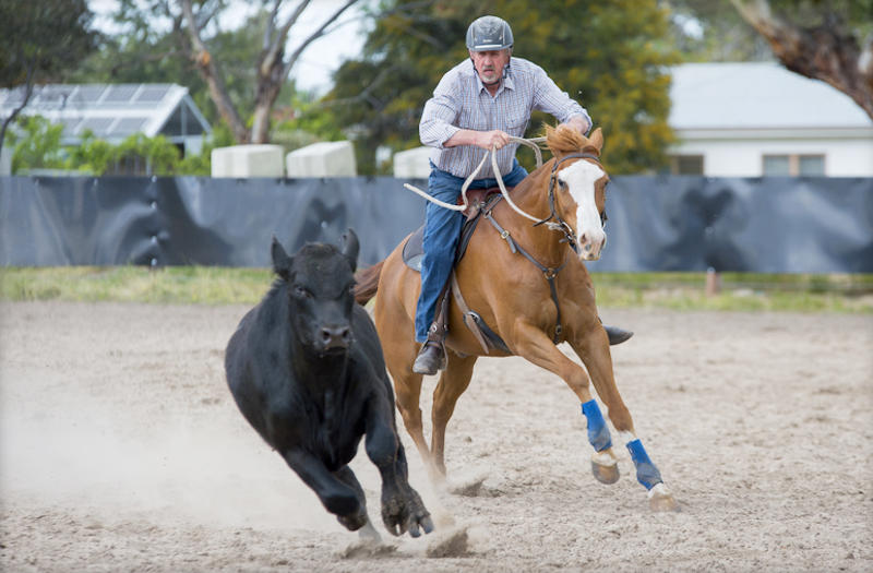 Keith-riding in campdraft competition